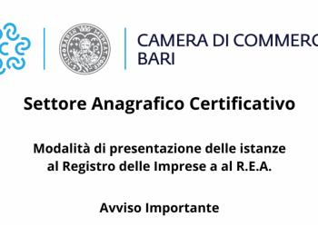 SETTORE ANAGRAFICO CERTIFICATIVO MODALITÀ DI PRESENTAZIONE DELLE ISTANZE AL R.I E AL R.E.A. - AVVISO IMPORTANTE